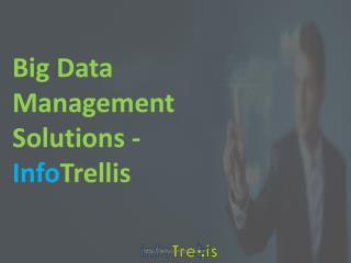 Infotrellis Big Data Management Solutions