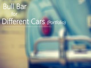 Bull Bars for Different Cars(Portfolio)