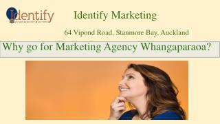 Marketing Agency Whangaparaoa