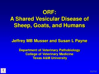 ORF: A Shared Vesicular Disease of Sheep, Goats, and Humans