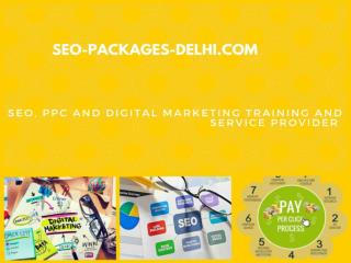 Seo-packages-delhi
