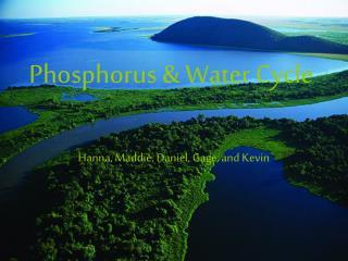 Phosphorus  Water Cycle