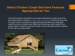Select Chicken Coops that have Features Appropriate for You