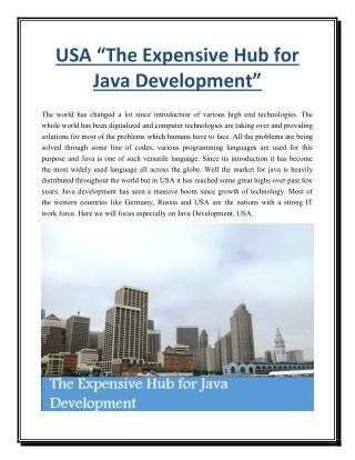 "USA ""The Expensive Hub for Java Development"""