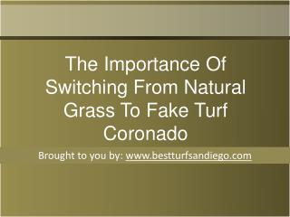 The Importance Of Switching From Natural Grass To Fake Turf Coronado