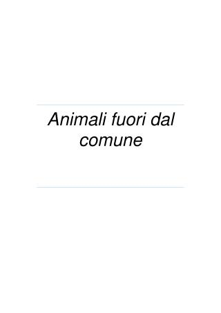 animali fuori dal comune