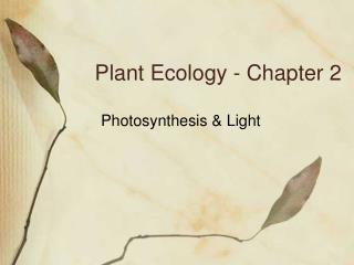 Plant Ecology - Chapter 2