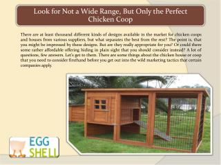 Look for Not a Wide Range, But Only the Perfect Chicken Coop
