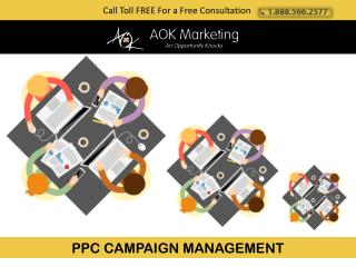 PPC CAMPAIGN MANAGEMENT - Aok Marketing