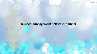Business Management Software in Dubai