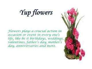 Shop Flower Bouquet Online From Yupflowers