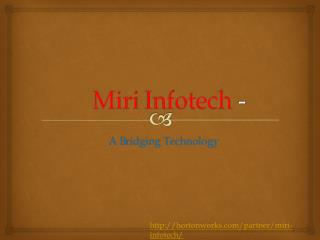 Miri Infotech - A Briding Technology service Provider