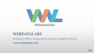 Ecommerce website development company in mysore - Webdatalabs