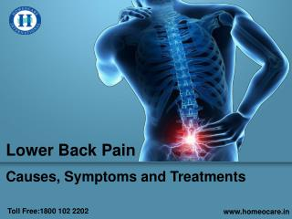 Lower Back Pain | Causes, Symptoms and Treatments