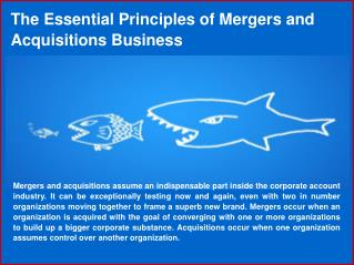 Best Merger and Acquisition Brokers