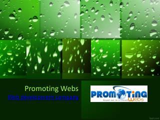 Web development company Promoting Webs