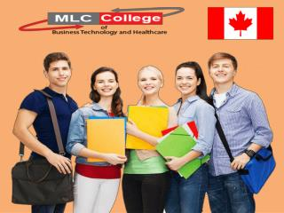 ERP SAP Training  From MLC College Canada