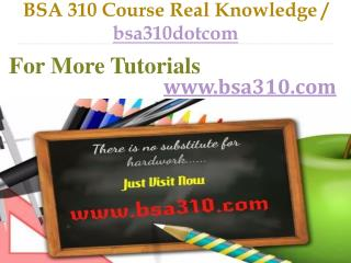 BSA 310 Course Real Knowledge / bsa310dotcom