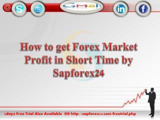 Forex Market Signal |Sapforex24 |Forex Live