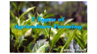 7 Types of Agriculture Farming - Caroline Plouff