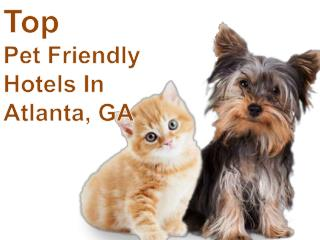 Pet Friendly Hotels in Atlanta, Georgia | TripsWithPets.com
