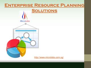 Best Enterprise Resource Planning Solutions Providers in Singapore