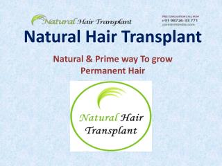 Natural Hair Transplant -The best hair loss treatment provider in India.....