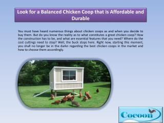 Look for a Balanced Chicken Coop that is Affordable and Durable