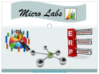 NAV ERP - Microlabs PVT LTD