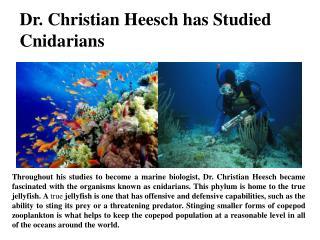 Dr. Christian Heesch has Studied Cnidarians