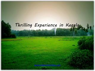 Thrilling Experience in Kerala