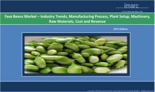 Fava Beans Market - Industry Analsyis, Trends and Forecast 2016 - 2021
