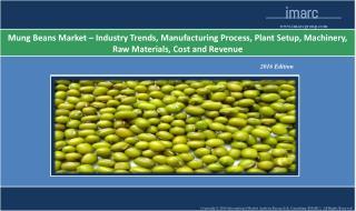 Mung Beans Market Report 2016 - 2021