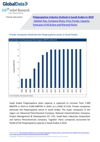 Polypropylene Industry Outlook in Saudi Arabia to 2019