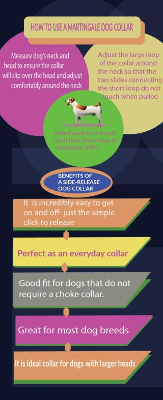 Benefits of a Martingale Collar