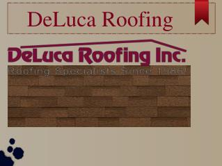Deluca roofing Services