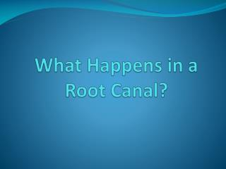 What Happens in a Root Canal?