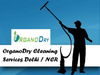 OrganoDry Cleaning Services Delhi / NCR