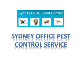 Sydney office pest control service