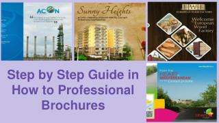 Step by Step Guide in How to Professional Brochures