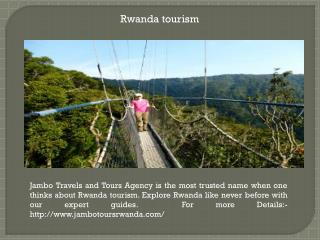 Rwanda primates tours and safaris