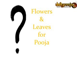 Pooja Flowers, Leaves & Utensils for Regular Pooja
