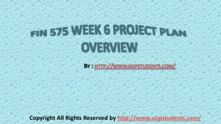 FIN 575 Week 6 Project Plan Overview