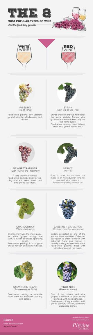 The 8 Most Popular Types of Wine & The Food They Go With