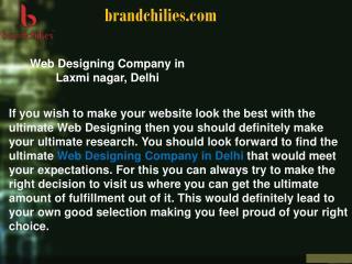 Web Designing Company in Laxmi nagar, Delhi