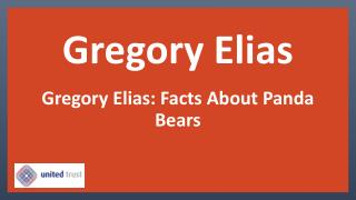 Gregory Elias and Intellectual Property Services