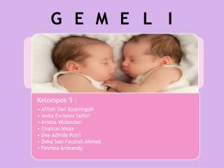 GEMELI (kehamilan kembar)