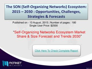 Self-Organizing Networks Ecosystem Market 2030