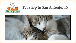 Pet Shop In San Antonio, TX