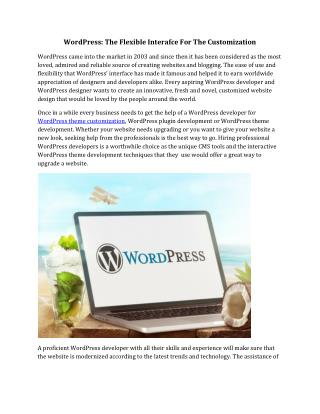 WordPress: The Flexible Interafce For The Customization